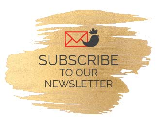 Subscribe to our Newsletter - Canadian Business Chicks